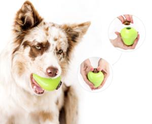 comfy pies zzabawką plug snack jabłko wpysku oraz 2 zblizenia na dłonie prezentujące sposób aplikacji smakołyku