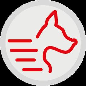 Для активных собак